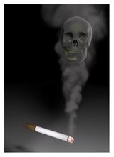 Zig+Skull neu+rand